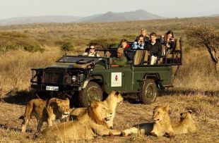 game drives thanda web1